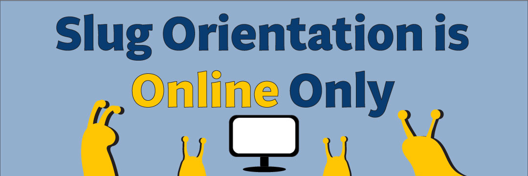 Reminder that orientation is only online.